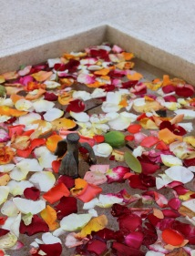 flower petals in fountain