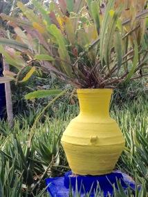 yellow vase with plant